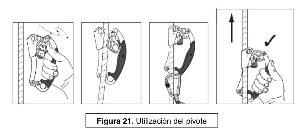 figura21